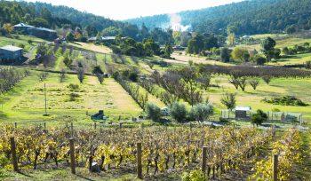 Perth's scenic Swan Valley region is where David Hurt calls home.
